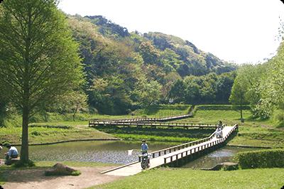 新林公園画像1